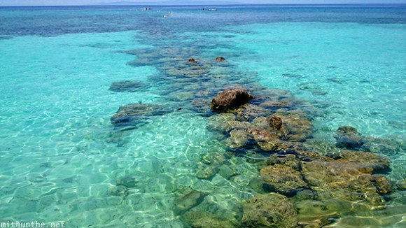 Clear blue water Oslob Cebu