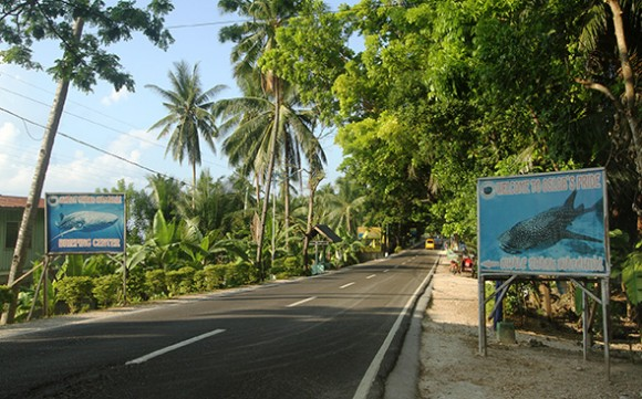 Oslob dive center main road