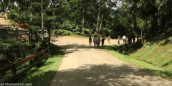 Davao Eden Nature park path