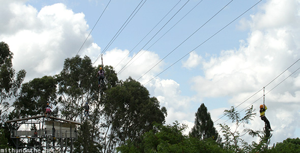 Zip line tower Eden Nature park
