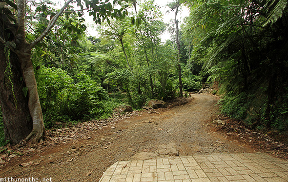 Eden Nature Park trekking road