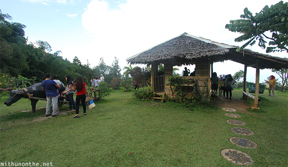 Eden Nature park viewpoint Davao