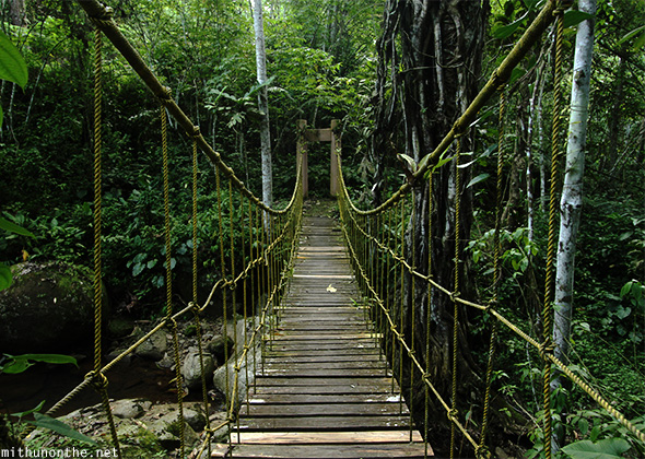 Hanging bridge Eden park Davao