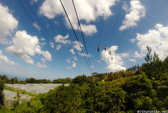 Zip line view of Sky Cycle Eden Davao