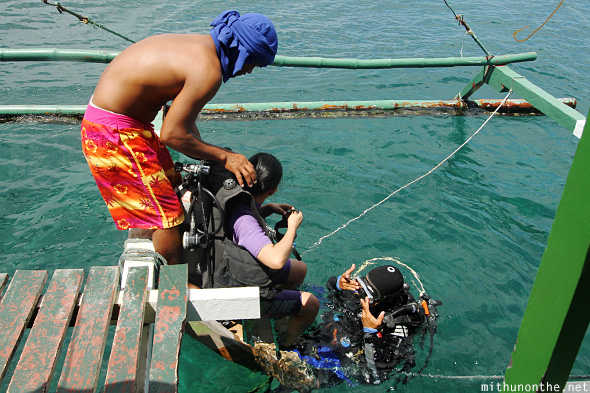 Carabao first dive Davao Philippines