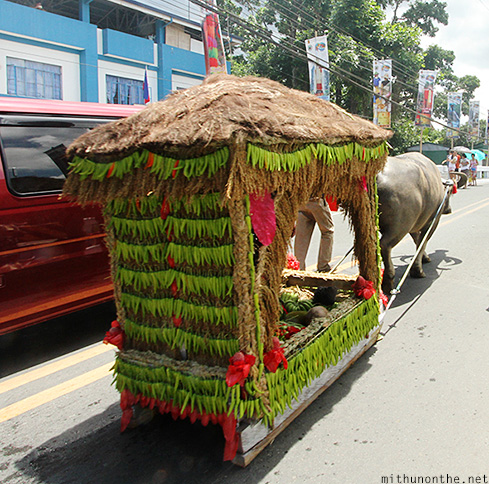 Carriage carabao Lucban Philippines