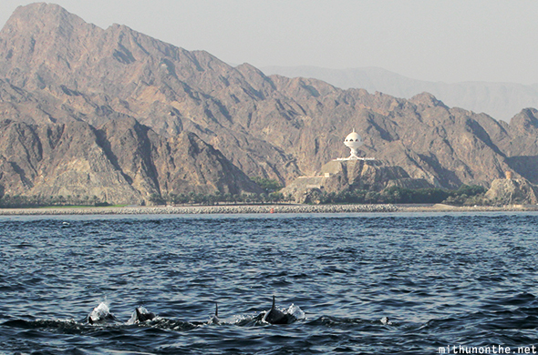 Dolphin tour Muscat