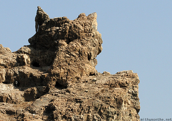 Fox shaped mountain rock Oman