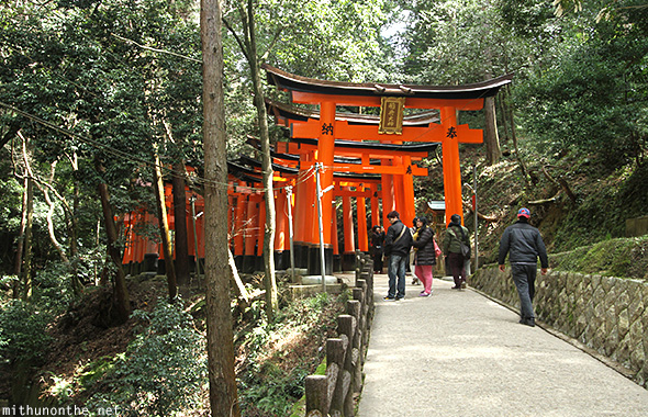Fushimi Inari forest Kyoto Japan