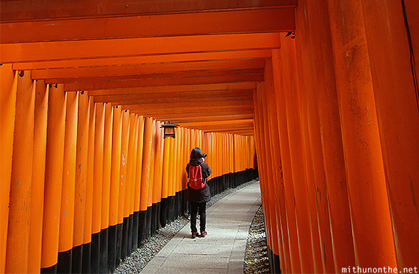 Fushimi Inari small torii Japan