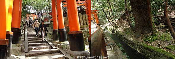 Fushimi Inari stream hill steps