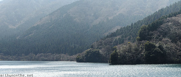 Lake Ashi forest Hakone Japan