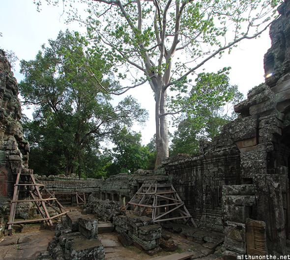 Banteay Kdei temple renovation